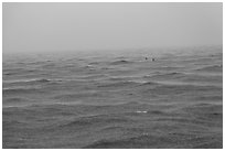 Windjammer wreck sticking out from ocean during rainstorm. Dry Tortugas National Park, Florida, USA. (black and white)