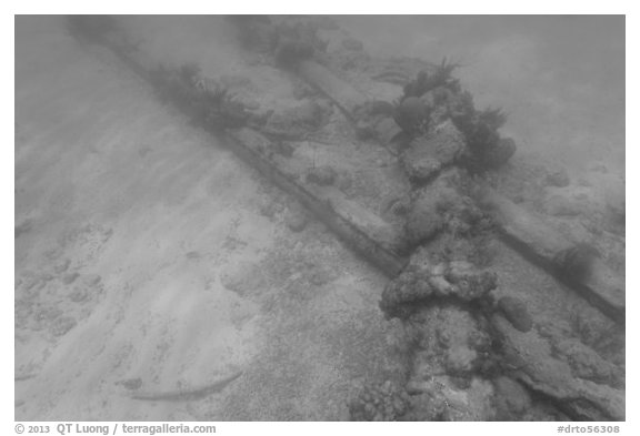 Part of Windjammer wreck on ocean floor. Dry Tortugas National Park (black and white)