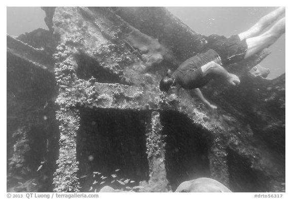 Free diver exploring Windjammer Wreck. Dry Tortugas National Park (black and white)