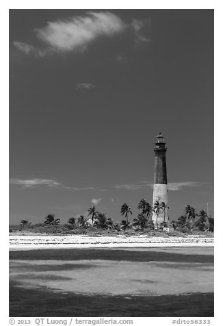 Loggerhead Light, palm trees and turquoise waters. Dry Tortugas National Park (black and white)