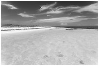 Clear turquoise waters and beach, Loggerhead Key. Dry Tortugas National Park, Florida, USA. (black and white)