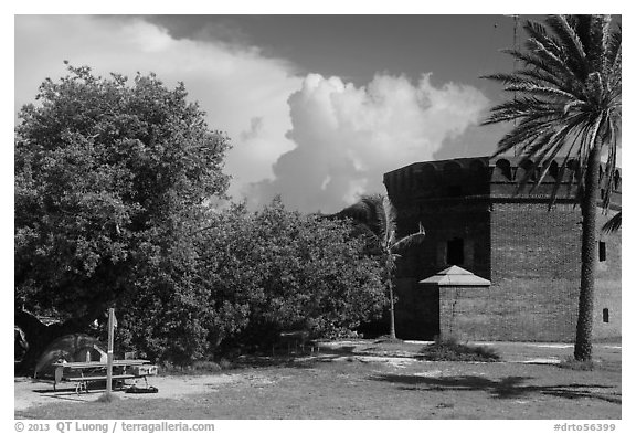 Camping. Dry Tortugas National Park (black and white)