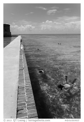 Snorkelers next to Fort Jefferson seawall. Dry Tortugas National Park (black and white)