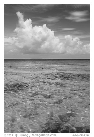Reef and tropical clouds. Dry Tortugas National Park (black and white)