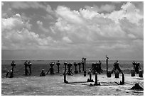 South coaling dock ruins and seabirds, Garden Key. Dry Tortugas National Park, Florida, USA. (black and white)
