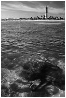 Coral head and Loggerhead Key lighthouse. Dry Tortugas National Park, Florida, USA. (black and white)