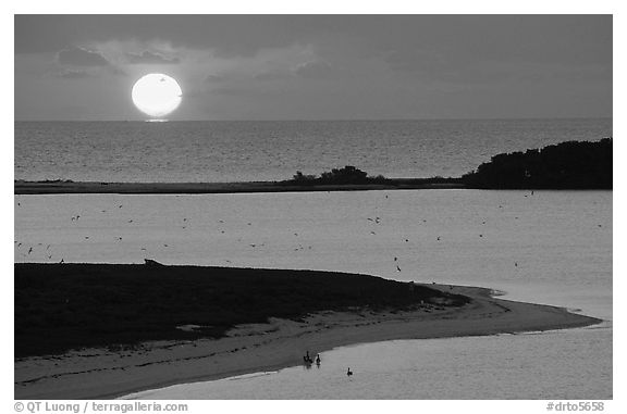 Sunrise over Long Key and Atlantic Ocean. Dry Tortugas National Park (black and white)