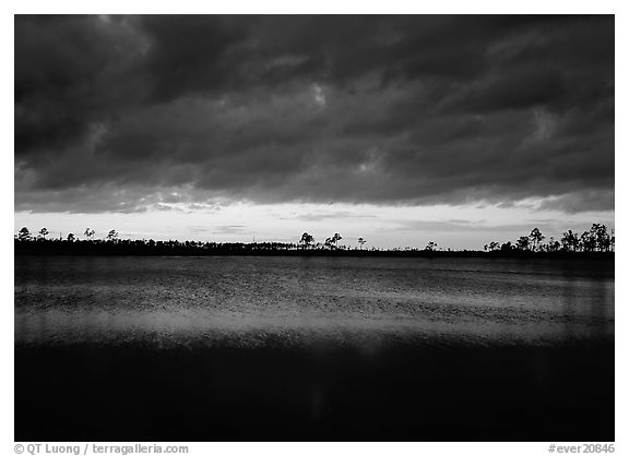 Sunset with dark clouds,  Pine Glades Lake. Everglades National Park (black and white)