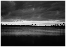 Sunset with dark clouds,  Pine Glades Lake. Everglades National Park, Florida, USA. (black and white)