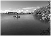 Canoists fishing. Everglades National Park ( black and white)