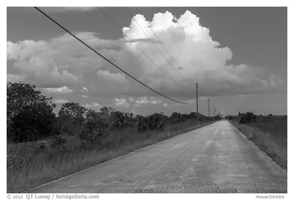 Road and cloud, Chekika. Everglades National Park (black and white)