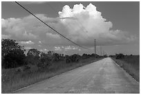 Road and cloud, Chekika. Everglades National Park, Florida, USA. (black and white)