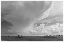 Storm clouds, Chekika. Everglades National Park, Florida, USA. (black and white)