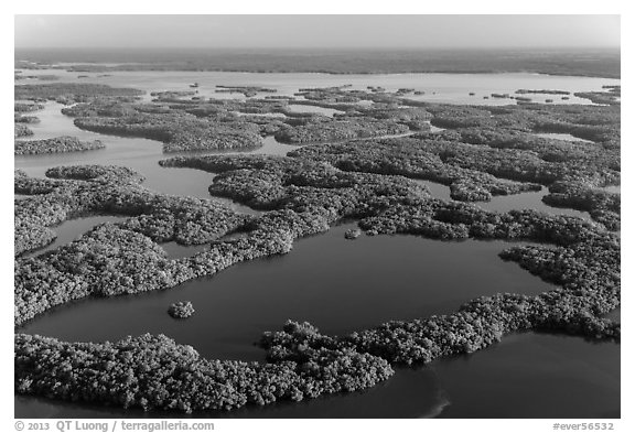 Aerial view of Ten Thousand Islands and Chokoloskee Bay. Everglades National Park (black and white)