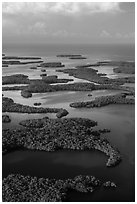 Aerial view of Ten Thousand Islands and coast. Everglades National Park, Florida, USA. (black and white)