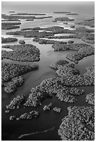 Aerial view of Ten Thousand Islands. Everglades National Park, Florida, USA. (black and white)