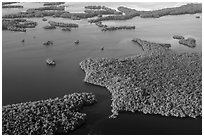 Aerial view of coastal mangrove islands. Everglades National Park, Florida, USA. (black and white)