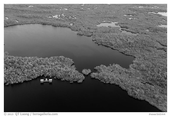 Aerial view of lake with elevated camping platforms (chickees). Everglades National Park (black and white)