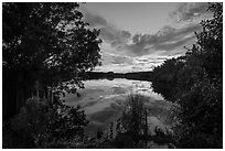 Paurotis Pond at sunset. Everglades National Park ( black and white)