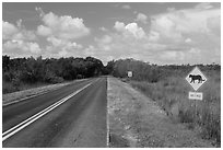 Road with Florida Panther sign. Everglades National Park ( black and white)