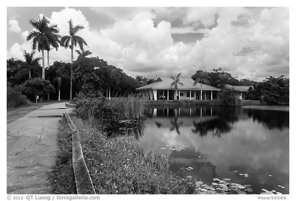 Anhinga Trail, Royal Palms Visitor Center. Everglades National Park (black and white)