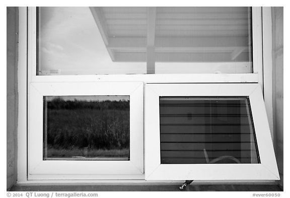 Prairie and hammock, Shark Valley visitor center window reflexion. Everglades National Park (black and white)