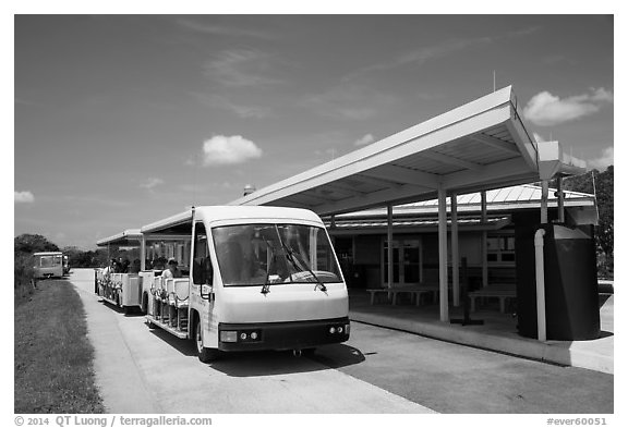 Tram and visitor center, Shark Valley. Everglades National Park (black and white)