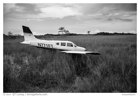 Crashed plane in marsh, Shark Valley. Everglades National Park (black and white)