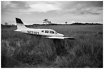 Crashed plane in marsh, Shark Valley. Everglades National Park ( black and white)