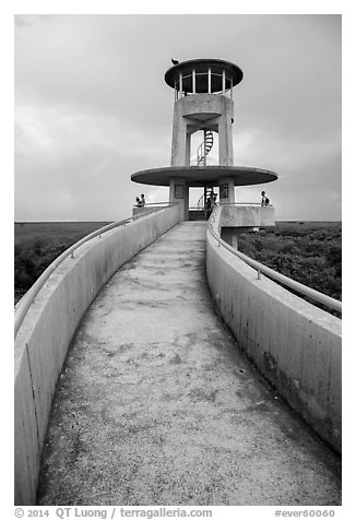 Observation tower and visitors, Shark Valley. Everglades National Park (black and white)