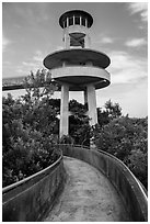Observation tower, Shark Valley. Everglades National Park ( black and white)