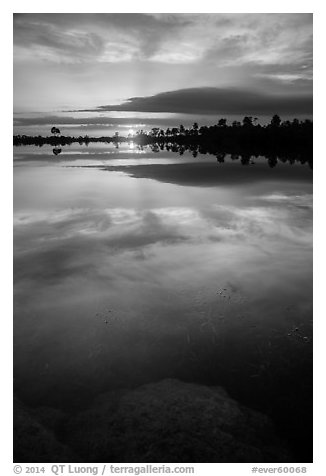 Sunset, Pines Glades Lake. Everglades National Park (black and white)