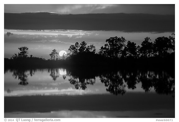 Sun setting, Pines Glades Lake. Everglades National Park (black and white)