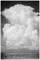Summer clouds above waters, Florida Bay. Everglades National Park ( black and white)