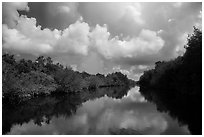 Buttonwood Canal and rain clouds. Everglades National Park ( black and white)