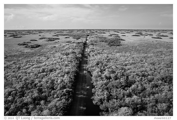 Aerial view of canal and road, Shark Valley. Everglades National Park (black and white)