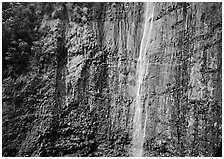 Waimoku Falls, more than 300 feet high. Haleakala National Park ( black and white)