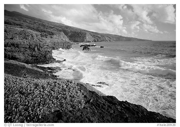 Coast at Kipahulu, morning. Haleakala National Park (black and white)