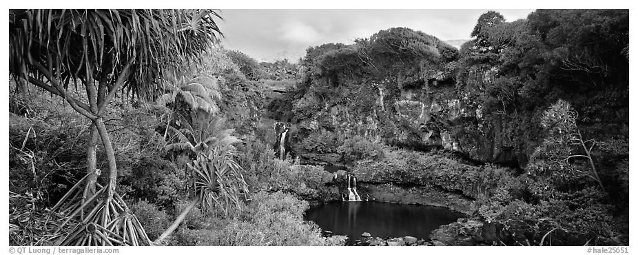 Tropical landscape with pools and waterfalls. Haleakala National Park (black and white)