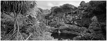 Tropical landscape with pools and waterfalls. Haleakala National Park (Panoramic black and white)