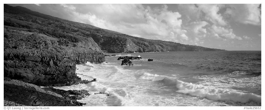 Coastline with volcanic cliffs and strong surf. Haleakala National Park (black and white)