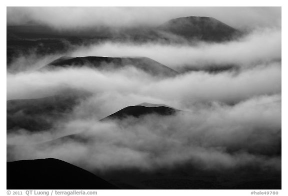 Cinder cones emerging from clouds. Haleakala National Park (black and white)