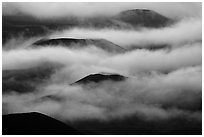 Cinder cones emerging from clouds. Haleakala National Park, Hawaii, USA. (black and white)