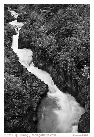 Pipiwai Stream in Oheo Gulch. Haleakala National Park (black and white)