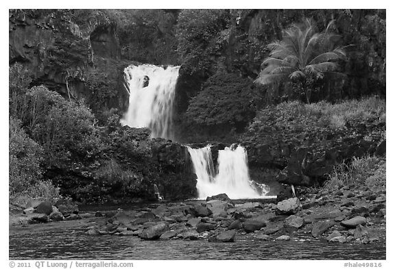 Waterfalls during high water,  Seven Sacred Pools. Haleakala National Park (black and white)