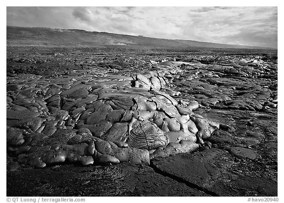 Freshly cooled lava on plain. Hawaii Volcanoes National Park (black and white)