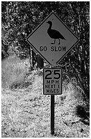 Road sign showing the nene (Hawaiian goose). Hawaii Volcanoes National Park, Hawaii, USA. (black and white)