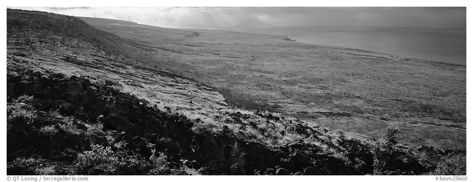 Volcanic landscape with lava rocks. Hawaii Volcanoes National Park (black and white)