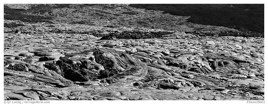 Slope covered with hardened lava flow. Hawaii Volcanoes National Park (black and white)