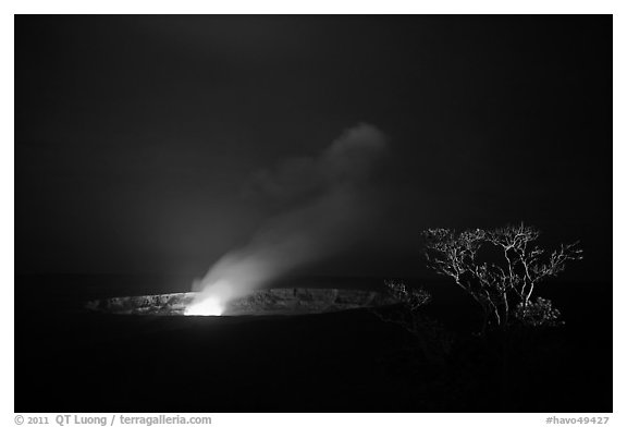 Halemaumau crater vent and Ohia tree by night. Hawaii Volcanoes National Park (black and white)